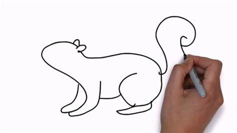 how to a squirrel squirrel drawing easy squirrel drawing how to draw squirrels with
