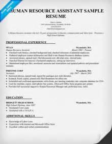 sample resume for hr intern