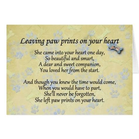 comforting quotes about death of a dog 25 best pet sympathy quotes on pinterest pet loss