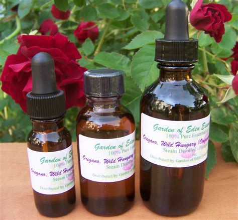 Garden Of Essential Oils Oregano Essential 100 Undiluted Garden Of
