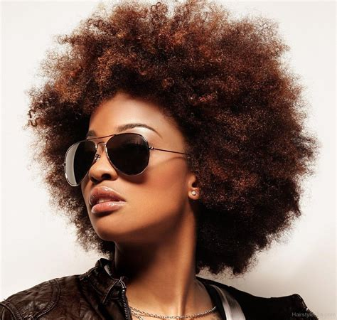 Hairstyles For Afros by Cutest Afro Hairstyles For Black Hairstyles 2017