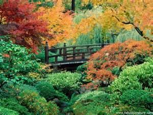 Garden Of Washington Gardens Pictures Japanese Garden Washington Park