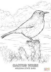 az coloring pages arizona state bird coloring page free printable coloring