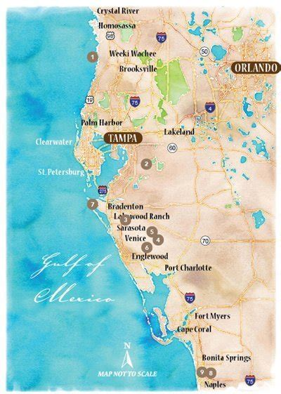 venture  explore  coast  southwest florida