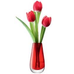 Lsa Glass Vase Lsa Flower Colour Bud Red Glass Vase