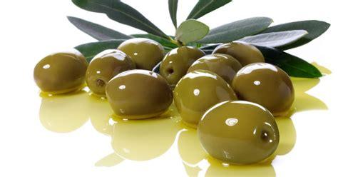 Minyak Makan orang wangsa maju rahsia minyak zaitun minyak yang makan minyak