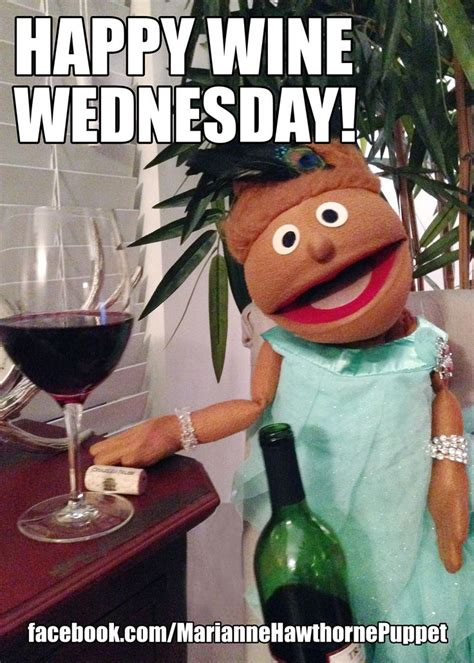 Funny Wine Memes - happy wine wednesday meme funny red wine white wine