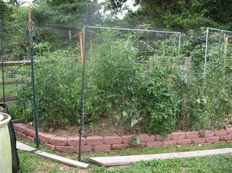 240 Best Images About Deer Proof Garden On Pinterest Deer Proof Vegetable Garden