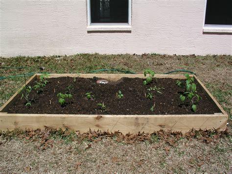 soil mix for raised beds the importance of quot good soil quot growin crazy acres