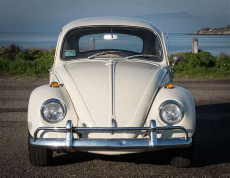 volkswagen bug white 1967 vw volkwagen beetle bug original lotus white no