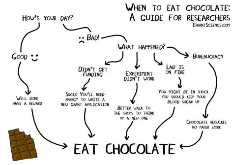 ate chocolate quot when to eat chocolate a guide for researchers quot by errantscience redbubble