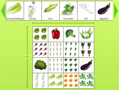 Vegetable Garden Layout Plans And Spacing Planning A Garden Layout With Free Software And Veggie