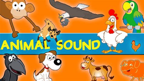 animal sounds animals sounds sounds of the animals song learn animal
