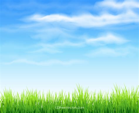 gras himmel sky and grass background 123freevectors