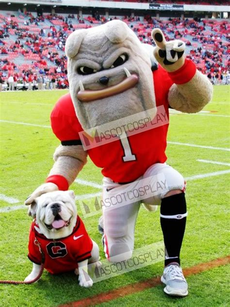 Dawg Uga Mascot Pictures dawg mascot costume of the of