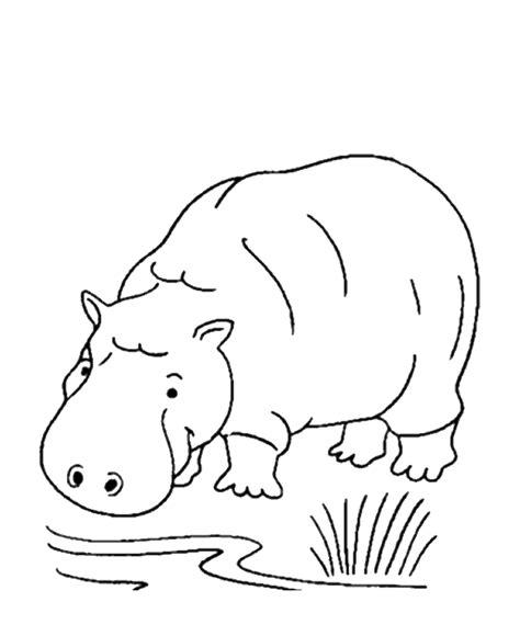 wild animals coloring pages preschool האתר הגדול בישראל לדפי צביעה להדפסה ואונליין באיכות מעולה