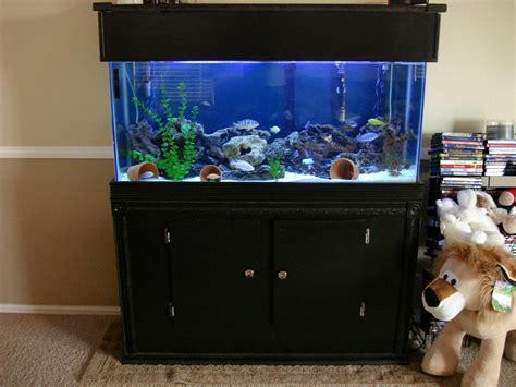 top 28 55 gallon tank dimensions aquarium tank size dimensions and weight oceanview