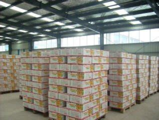 Maket Orang Skala 1150 Per 10 Pcs canned orange products china canned orange supplier