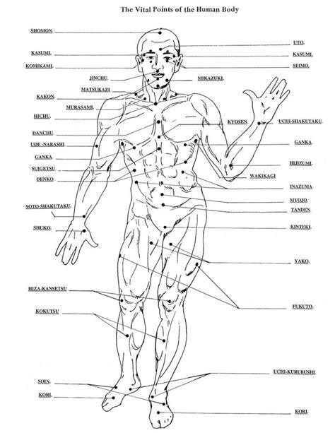 diagram of pressure points on the human 22 best nerve hold claw images on