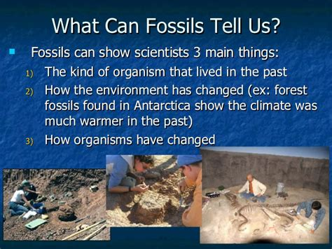 what us scow p p t fossils 9