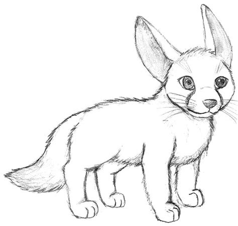 desert fox coloring page little desert fox coloring pages animals inside fennec
