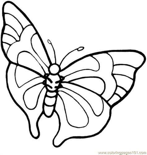 rainforest butterfly coloring pages free coloring pages of rainforest insects