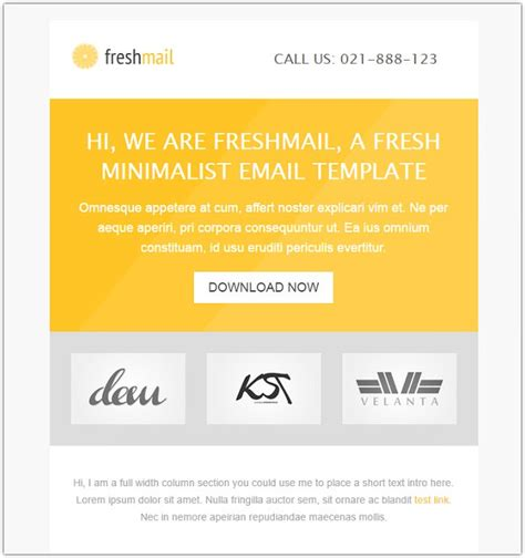 14 premium email design templates for download web