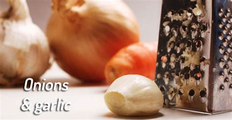 why are onions bad for dogs 10 common vegetables and fruit that can kill or hurt your beware
