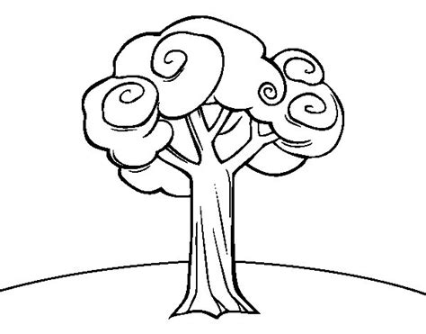 coloring pages of a big tree large trees colouring pages