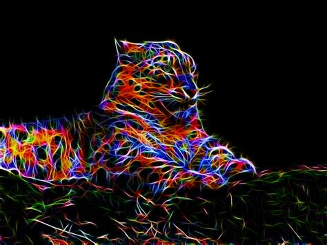 colorful wallpaper animal colorful leopard x by megaossa on deviantart