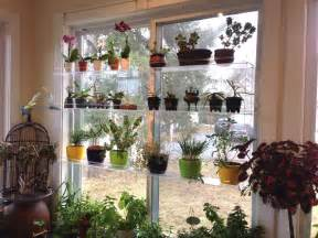 hanging window plant shelves hanging window plant shelves photo gallery beautiful views