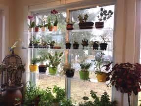 hanging window plant shelves photo gallery beautiful views