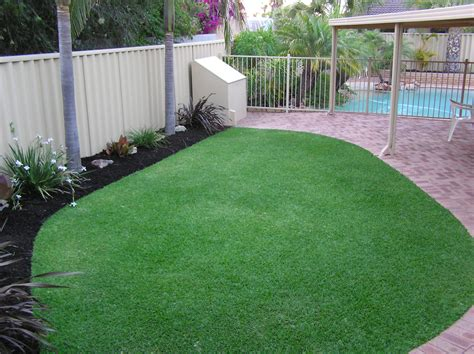 couch lawn dna certified sir walter lawn turf grass lawn doctor