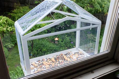 window box bird feeder house window bird feeders birdcage design ideas