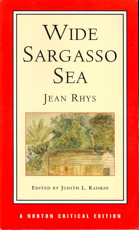 scatteredpaper wide sargasso sea