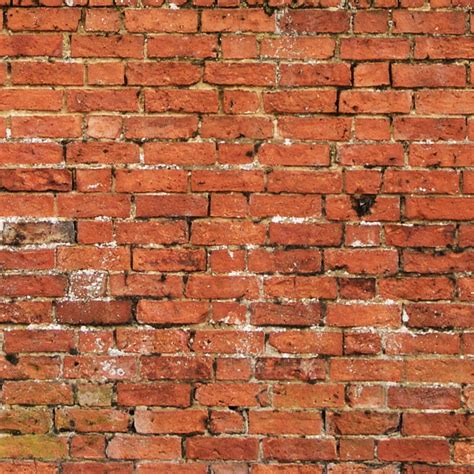 virender hooda royalty free brick wall texture hd