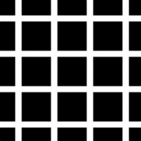 ilusiones opticas y su explicacion 10 ilusiones 243 pticas y su explicaci 243 npichicola net