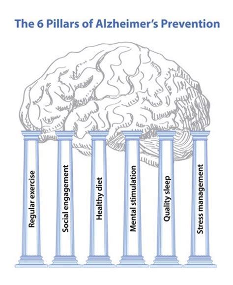 preventing alzheimer s alzheimer s factors prevention steps and foods that prevent or alzheimer s recipes for alzheimer s prevention diet essential spices and herbs books preventing alzheimer s disease what you can do to reduce