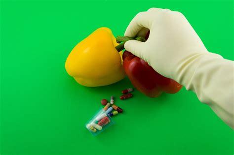 alimenti ogm alimenti ogm anche il pranzo di natale geneticamente
