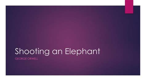 Shooting An Elephant Essay Analysis by Essay On Shooting Essay On Shooting Literary Analysis Of Shooting An Elephant Literary Analysis