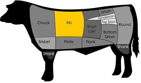 what is the best cut what is a ribeye steak where is it located on the beef
