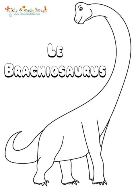 Le Brachiosaurus Un Dinosaure 224 Colorier Sur T 234 Te 224 Modeler