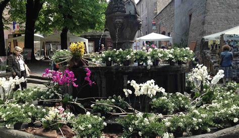cronaca di san in fiore san pellegrino in fiore si parte viterbo post