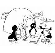 Pingu Dibujos Para Colorear  Dibujos1001com