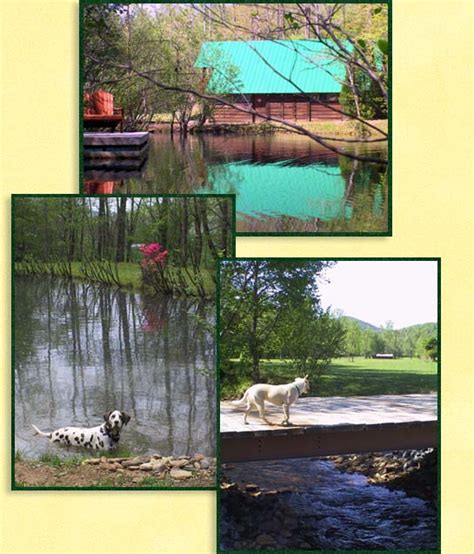 Log Cabins Dogs Allowed by Golden Valley Getaways Pet Friendly Log Cabin Rentals Near