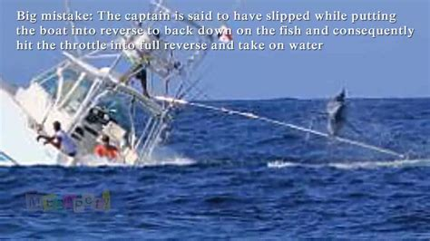 fishing boat sinks marlin sinks fishing boat youtube