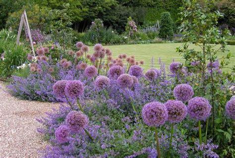 blumengarten anlegen blumengarten anlegen with vorgarten lavendel popole top