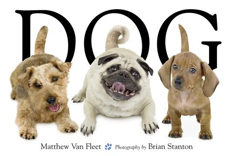 puppy book book by matthew fleet brian stanton official publisher page simon