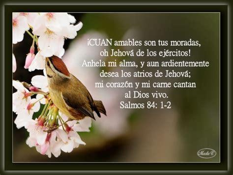 versos cortos de aves versiculos biblicos aves