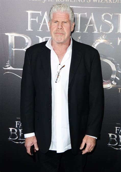 ron perlman in fantastic beasts ron perlman picture 58 fantastic beasts and where to